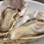 低温調理で牡蠣の開け方が簡単になる!身もプリップリ!